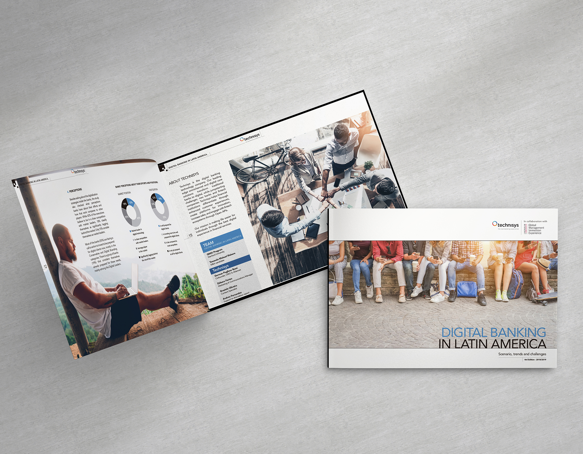 Projekt Group Branding -Technisys - Brochure Design